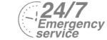 24/7 Emergency Service Pest Control in Stockwell, SW9. Call Now! 020 8166 9746