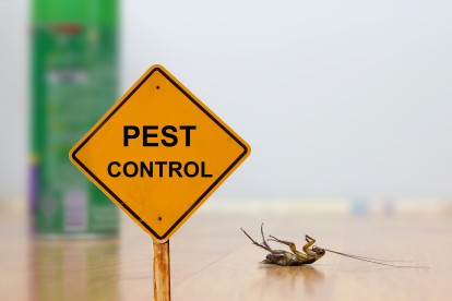 Pest Contol in Stockwell, SW9. Call Now 020 8166 9746